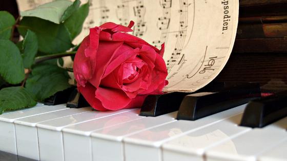 ピアノが弾けるようになる方法